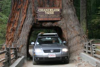 Fun Facts - Redwood National Park